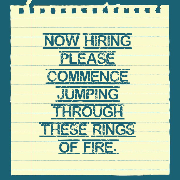 the job hunt