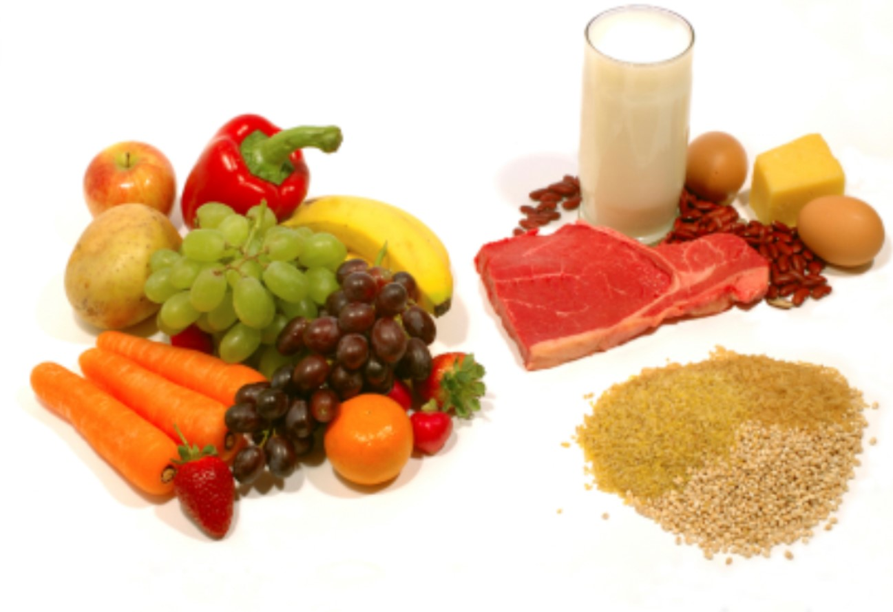 BEST DIET FOR AN ACTIVE LIFESTYLE
