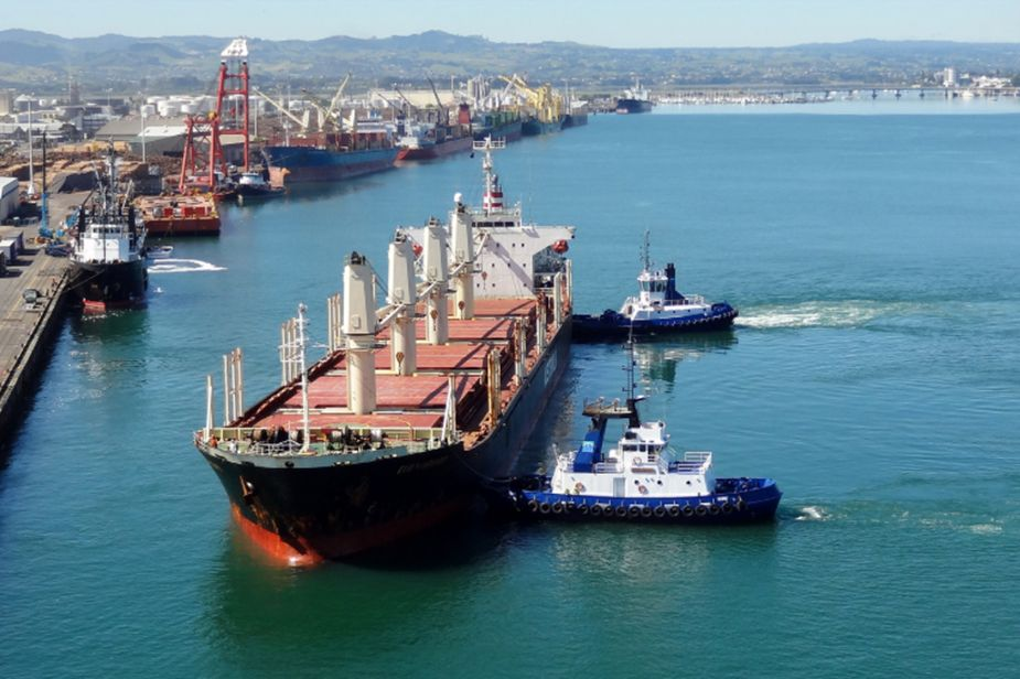 vessel chartering,