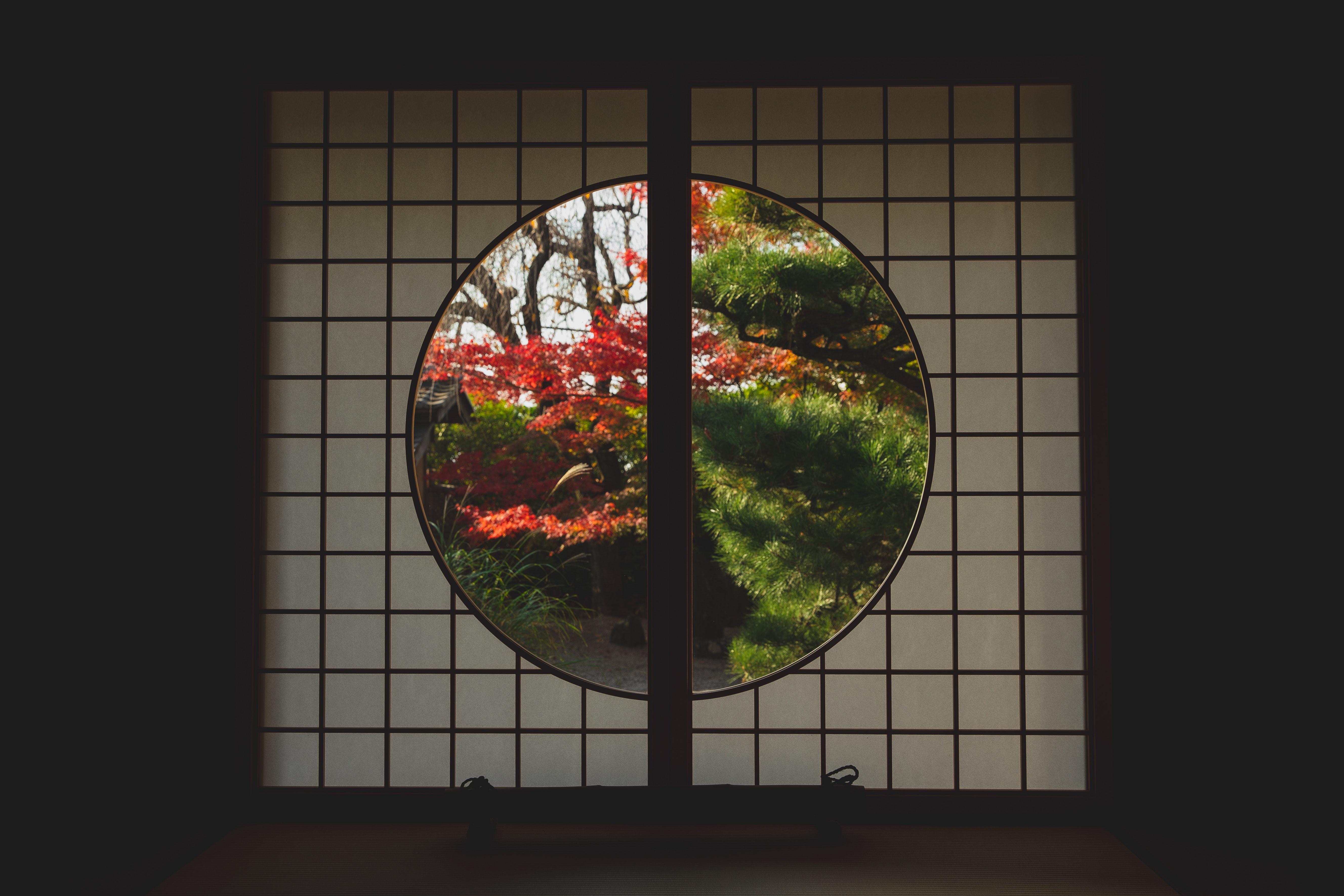 pexels-ryutaro-tsukata-6249543.jpg