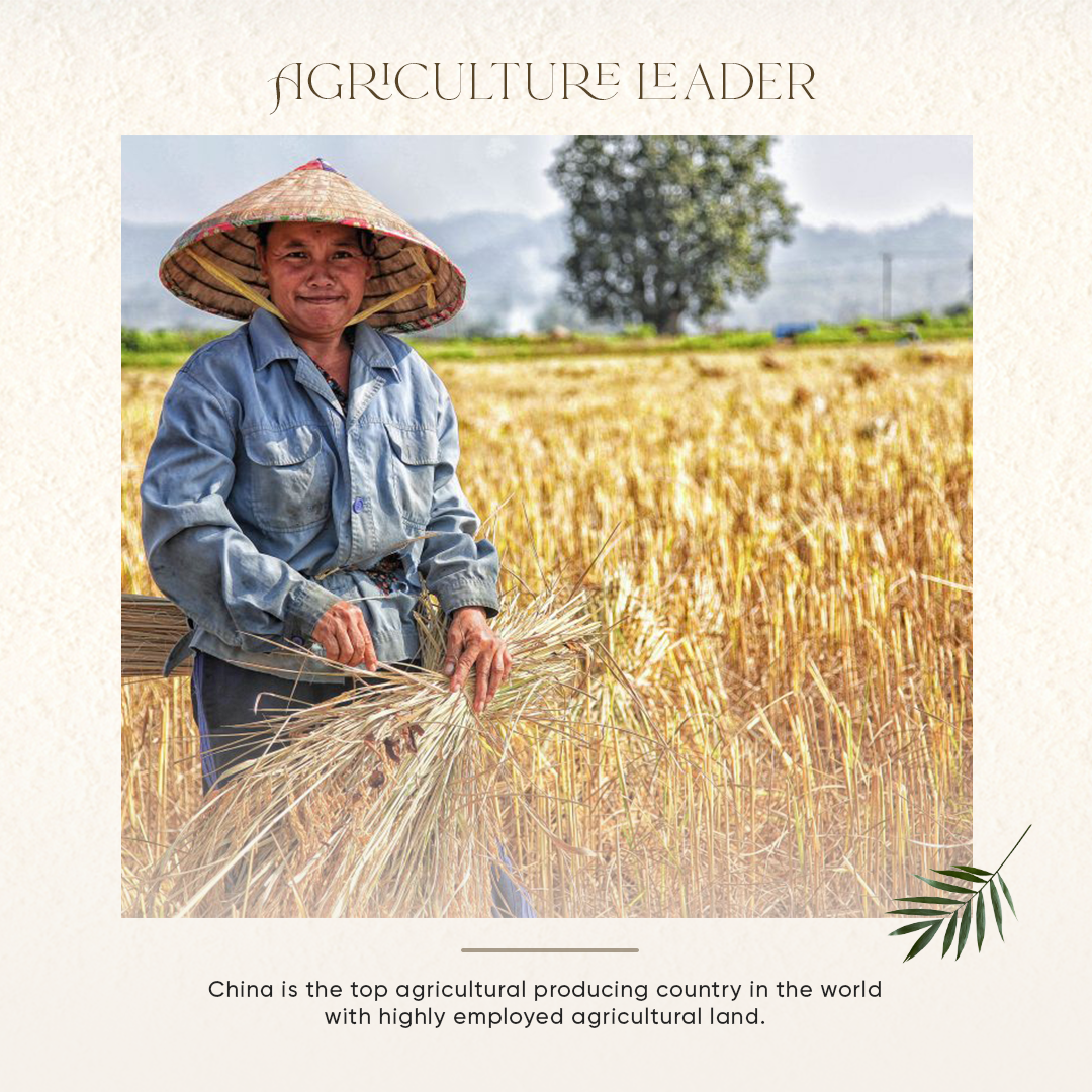23-juneRamesh-Agriculture-fact.png