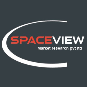 Spaceview Logo.jpeg