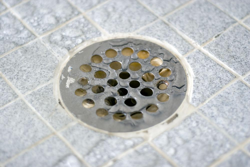 shower waste grate